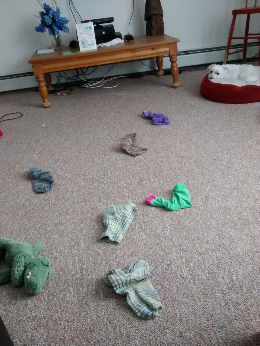 """Notice the desperation of the stuffed alligator stage left, and the """"who, me?"""" look on the small white demon in the upper right."""
