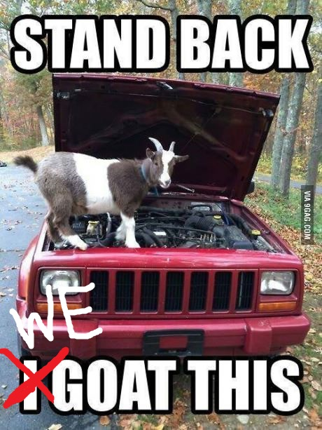 i-goat-this